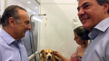 #pracegover: Foto mostra deputado Tripoli e governador Richa em clínica veterinária. Uma mulher aparece ao lado do governador e um cão está deitado sob o balcão