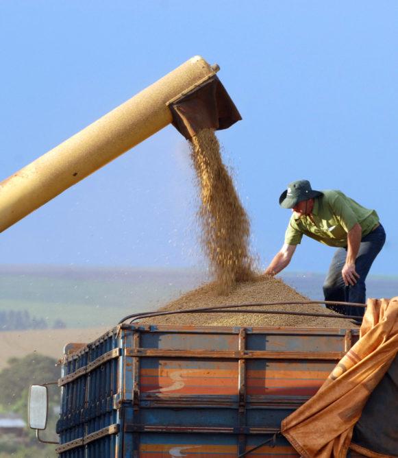 CASCAVEL/PR - 16-02-2011 - Colheita e plantação de soja no interior de Cascavel. Foto Jonas Oliveira