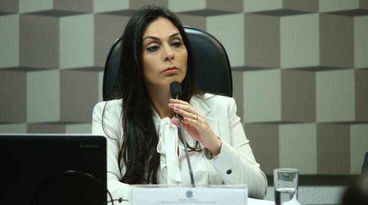 Deputada Geovânia de Sá (PSDB-SC) é presidente da comissão