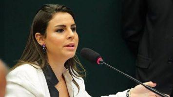 Projeto de Mariana cria Delegacia Eletrônica de Proteção ao Meio Ambiente