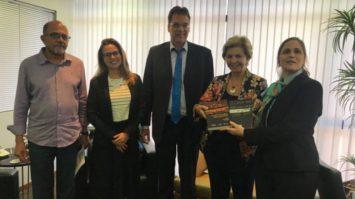 PSDB-Mulher e Fundação Konrad Adenauer definem estratégias para 2019